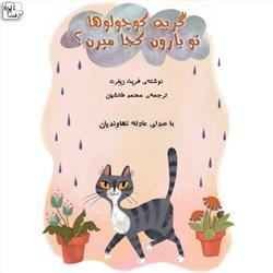 نسخه دیجیتالی کتاب صوتی گربه کوچولوها تو بارون کجا میرن؟