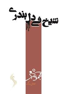 نسخه دیجیتالی کتاب شیخ فی دل بندری