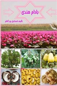 نسخه دیجیتالی کتاب بادام هندی