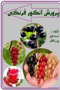 پرورش انگور فرنگی
