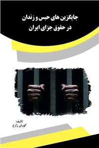 نسخه دیجیتالی کتاب جایگزین های حبس و زندان در حقوق جزای ایران