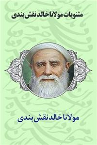 دانلود کتاب مثنویات مولانا خالد نقش بندی