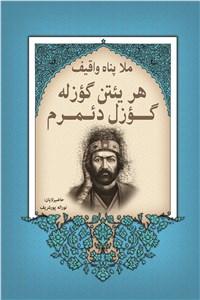 نسخه دیجیتالی کتاب هریئتن گوزله گوزل دئمرم