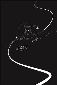 نسخه دیجیتالی کتاب شانه های پیاده رو