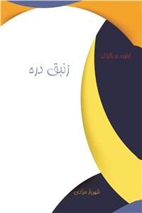 نسخه دیجیتالی کتاب زنبق دره
