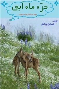 نسخه دیجیتالی کتاب دره ماه آبی