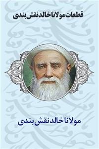 نسخه دیجیتالی کتاب قطعات مولانا خالد نقش بندی